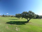 golf properties marbella